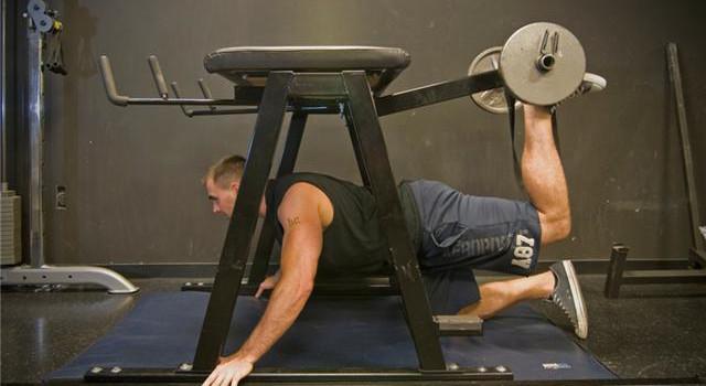 Pendulum-Quadruped-Hip-Extension